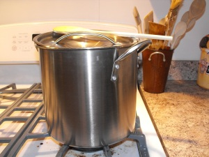 Chicken Stock simmering on my stove.. :) Mmmm.. smells yummy!